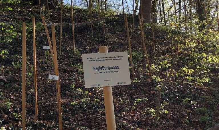 Baumpflanzaktion_170_Jahre_Freudenberg_DE