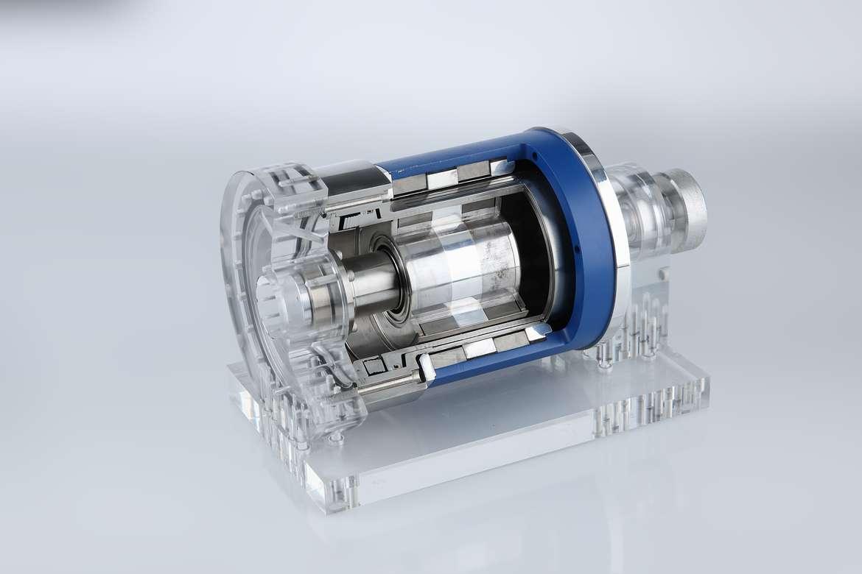 NMB Model_006.tiff