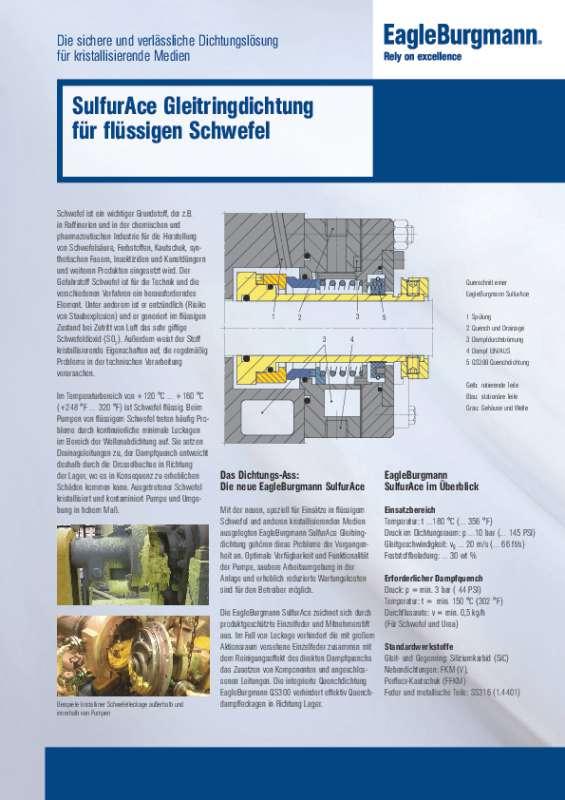 Solution: SulfurAce Gleitringdichtung für flüssigen Schwefel