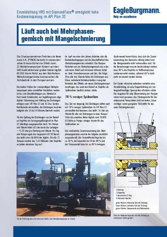 Solution: DF Multiphase pump DE
